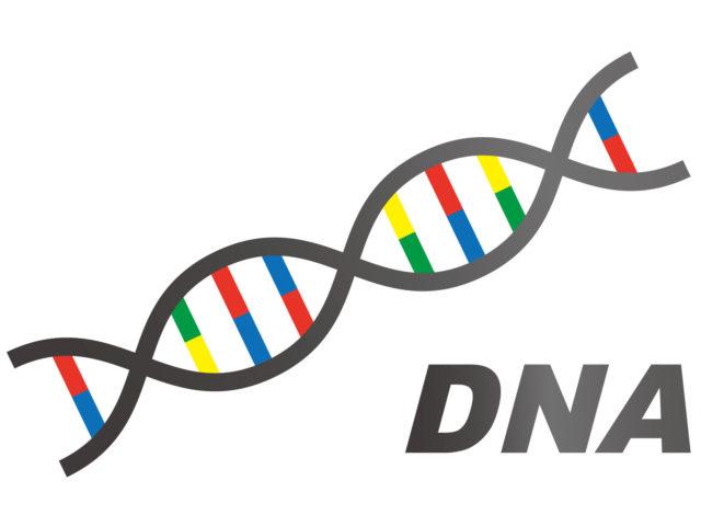 原因6:遺伝