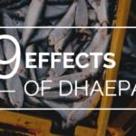 DHAEPAに期待できる9つの良い効果【医師監修】