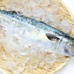 DHA・EPAは中性脂肪を本当に下げるのか?効果のメカニズムと信頼性